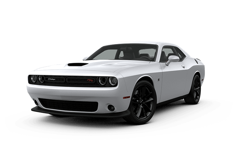 dodge challenger white muscle car scat pack bee edition