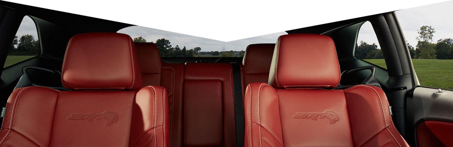 Logo laguna leather seats